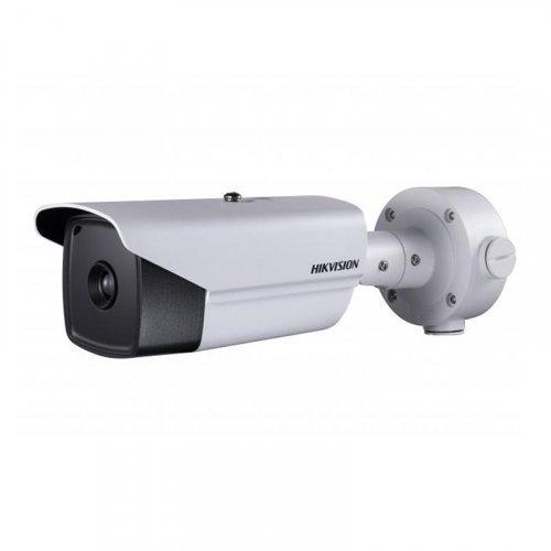 IP Камера Hikvision  DS-2TD2136-35/V1/N
